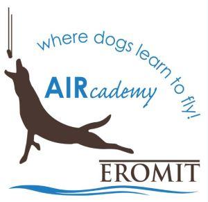 Aircademy logo small